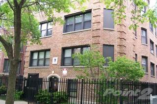 Apartment for rent in Sunnyside / Agatite, Chicago, IL, 60640