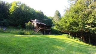Residential Property for sale in 527 North Branch Callicoon Ctr Road, Greater Jeffersonville, NY, 12766