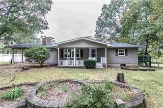 Single Family for sale in Rt. 1 Box 13, Ellsinore, MO, 63937