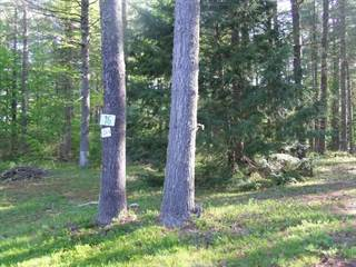 Land for sale in 0 Benjamin Wentworth Drive 16, Tamworth, NH, 03817