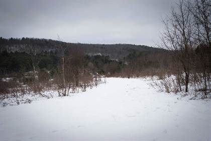 Lots And Land for sale in WP-001 Southwick Rd, Candor, NY, 13743