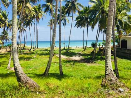Lots And Land for sale in Beachfront property with many palm trees, ideal for a project, Cabarete, Puerto Plata