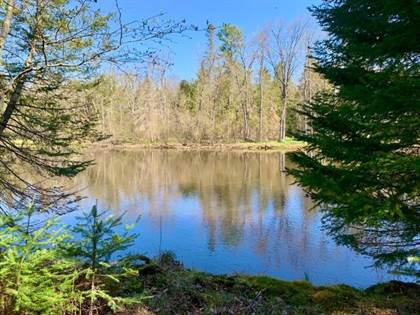 Lots And Land for sale in 6010 RIVER RD Adj to, Eagle River, WI, 54521