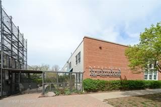 Condo for sale in 1300 W. Altgeld Street 117, Chicago, IL, 60614