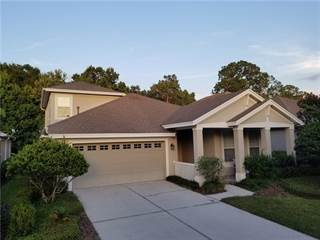 Single Family for sale in 20026 HERITAGE POINT DRIVE, Tampa, FL, 33647