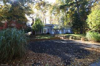 Duplex for sale in 239a OLD CHIMNEY RIDGE RD A, Montague, NJ, 07827