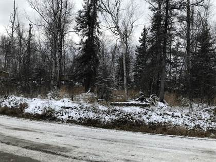 Lots And Land for sale in 1501 N Williwaw Way, Wasilla, AK, 99654