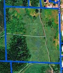 Land for sale in 00 N KANE Road, Webberville, MI, 48892