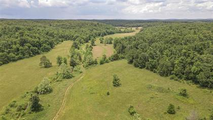 Farm And Agriculture for sale in 0 North Wayne County Road 204, Marquand, MO, 63655