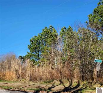 Lots And Land for sale in 0 Beasley Road, Hardin, KY, 42048