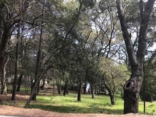 Land for sale in 7920 Soda Bay Road, Kelseyville, CA, 95451