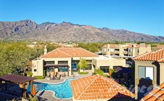 Apartment for rent in The Legends at La Paloma - One Bedroom, Catalina Foothills, AZ, 85718