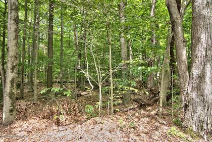 Lots And Land for sale in Deer Run, Pocono Pines, PA, 18350
