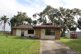 Single Family for sale in 9001 E Tsala Apopka Drive, Inverness, FL, 34450