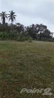 Lots And Land for sale in 54322 SM Land-Bani, Bani, Peravia