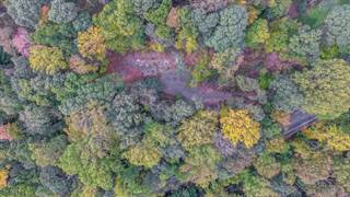 Land for sale in 213 HILLCREST RD, Watchung, NJ, 07069