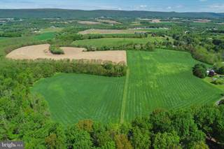 Land for sale in 7803 SECHLER ROAD, New Tripoli, PA, 18066