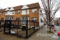Photo of Wets 169th Street & Plimpton Ave Highbridge, Bronx, NY 10452