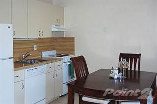 Apartment For Rent In Executive Apartments   St. Andrews, Miami Lakes, FL,