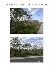 Farm And Agriculture for sale in Brgy. Patalac, Cabanatuan City, Nueva Ecija, Fort Magsaysay, Nueva Ecija