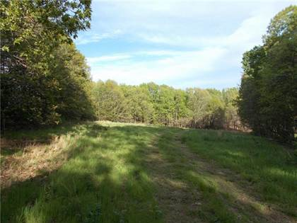 Lots And Land for sale in Tract 1 whippoorwill  WY, Jane, MO, 64856