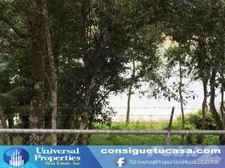 Residential Property for sale in BO GUAJATACA, San Sebastian, PR, 00685