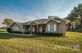 Residential Property for sale in 26158 Mountainview Boulevard, Spring Lake, FL, 34602