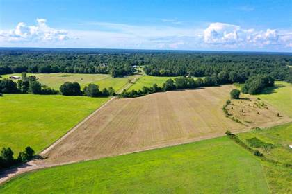Lots And Land for sale in 01 LIVINGSTON RD, Flora, MS, 39071