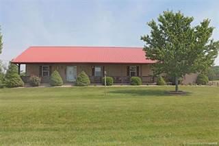 Single Family for sale in 1000 Gold Bits Drive, Farmington, MO, 63640
