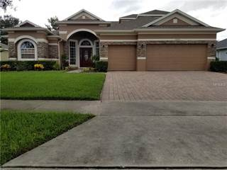 Single Family For Rent In 12325 WESTFIELD LAKES CIRCLE, Winter Garden, FL,  34787