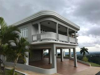 Single Family for sale in 0 KM 1 HM 2 PR 619 BO CUCHILLAS, Cuchillas, PR, 00687
