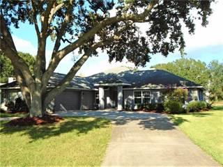 Single Family for sale in 28724 TAMMI DRIVE, Tavares, FL, 32778