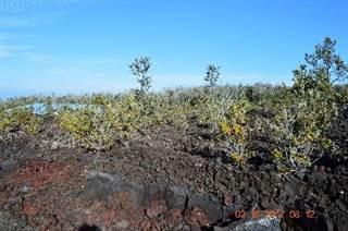 Land for sale in COCOANUT DR Lot : 35, Hawaiian Ocean View, HI, 96737