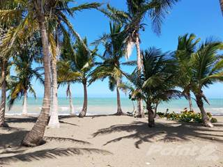 Residential Property for sale in CALLE OCEANO #27; STA ISABEL, PR, Cedro, PR, 00656