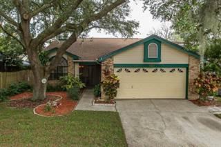 Single Family for sale in 665 DEER RUN N, Palm Harbor, FL, 34684