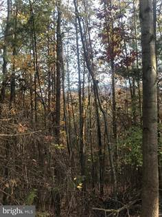 Lots And Land for sale in 0 HERDMAN HILL RD LOT 3, Luray, VA, 22835