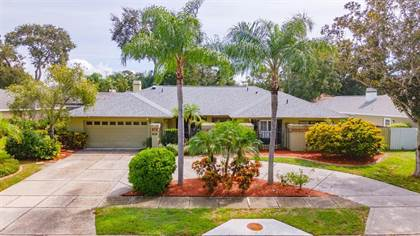 Residential Property for sale in 1563 MISTY PLATEAU TRAIL, Clearwater, FL, 33765