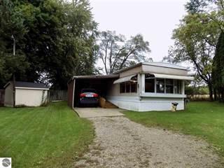 Single Family for sale in 256 N Fremont Street, Remus, MI, 49340