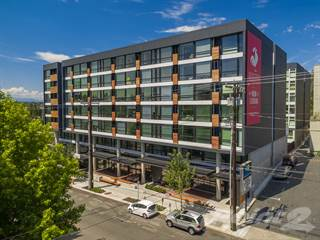 Apartment for rent in Rooster Apartments, Seattle, WA, 98115