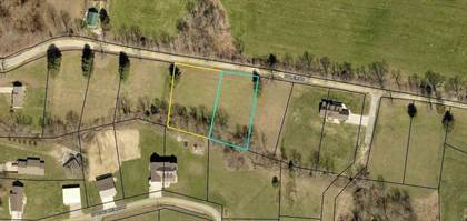 Lots And Land for sale in 13 and 14 W Coleman Rd, Science Hill, KY, 42553
