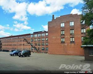 Apartment For Rent In Strouse Adler   One Bedroom Style 5, New Haven, CT