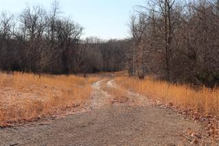 Land for sale in 0 Listen Lane Tract 3, Clever, MO, 65631