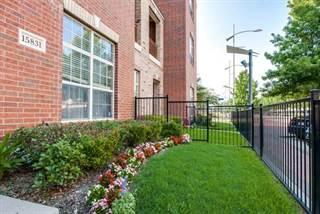 Condo for rent in 15831 Spectrum Drive, Addison, TX, 75001