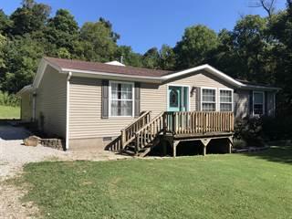 Single Family for sale in 2217 Westview Road, Belknap, IL, 62908