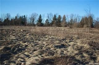 Land for sale in 00 CHAMPION Drive, Attica, MI, 48412
