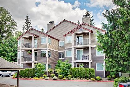 Houses & Apartments for Rent in Issaquah School District ...