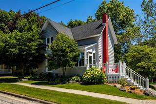 Single Family for sale in 426 BUTLER ST, Northville, MI, 48167