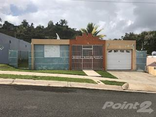 Residential Property for sale in Urb. Virginia Valley, Juncos, PR, 00777