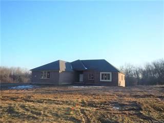 Single Family for sale in 5843 SARATOGA Drive, Greater Metamora, MI, 48371
