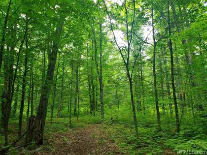Lots And Land for sale in TBD Five Mile Point, Ahmeek, MI, 49901
